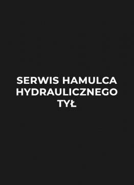 serwis-hamulca-hydralicznego-tyl