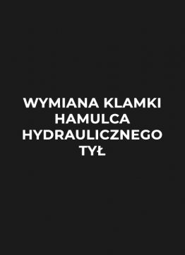 wymiana-klamki-hamulca-hydraulicznego-tyl