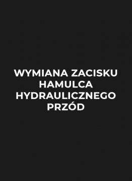 wymiana-zacisku-hamulca-hydraulicznego-przod